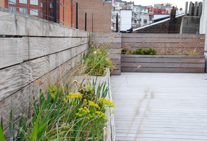 Jardin bruxelles for Superficie toiture
